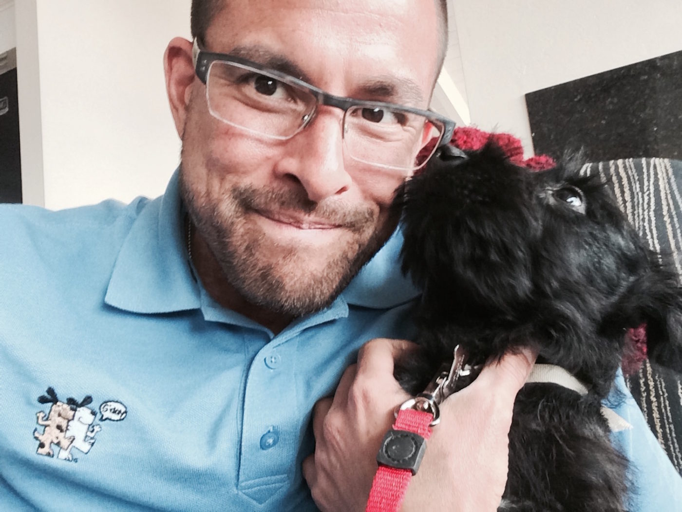 #smalldogsrock, #smalldogtraining, #SanDiegodogtrainer, #dogsofBarkbusters