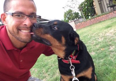 #lovingdogs, #obedientdogs #dogsofBarkBusters, #bestdogtrainer