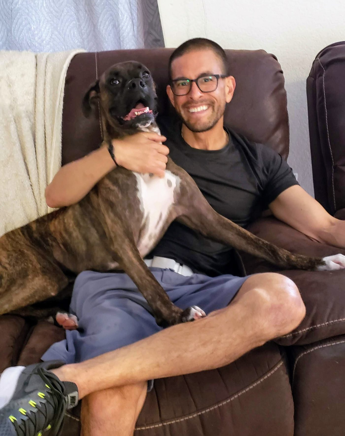 #dogtrainingboxers, #lapdog,#happydogforlife