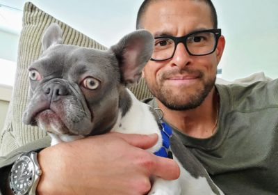#frenchbulldogtraining, #boundarytraining, #packleadership, #speakdog
