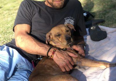 #dogtrainingsandiego, #fosterfail, #thaanimalpad, #adoptdogs