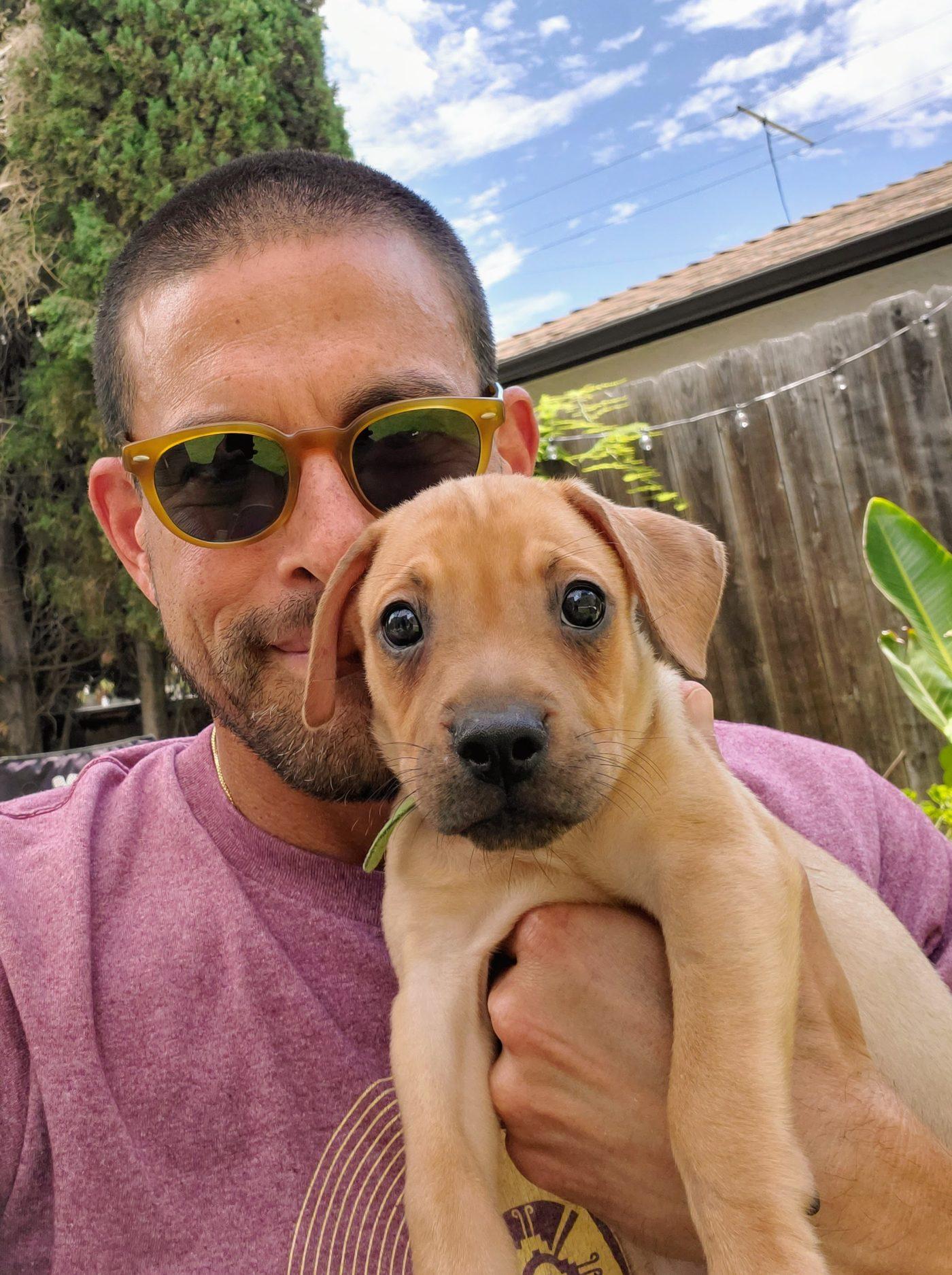#fosterpuppy, #housebreaking, #barkbusterssandiego, #puppytraining