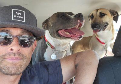 #fiestaisland, #dogbeach, #offleashrecall, #dogtrainersandiego, #dogtrainerchulavista